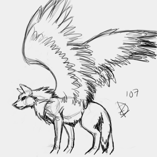 Anime Wolf with Wings by Faabiax3 on DeviantArt