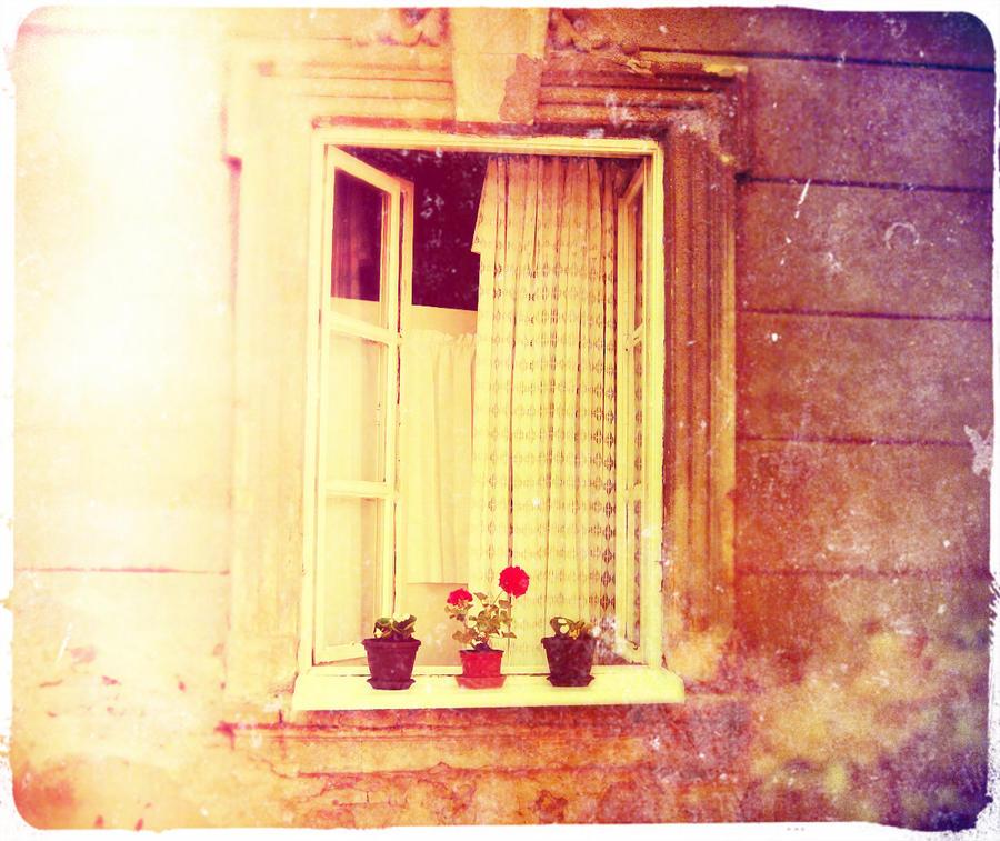 Prozori koji govore - Page 3 Life_in_technicolor_by_turquoisegrrrl-d466dbc