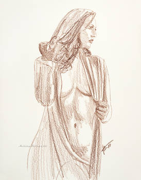Carlotta #41