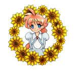 Ahiru and Sunflowers