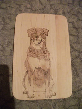 Rottweiler Pyrography by weisewoelfin