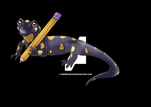 Salamander for Naturama