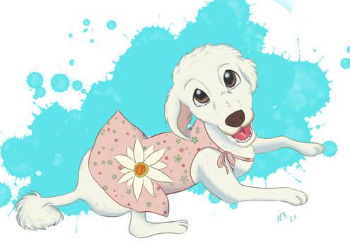 Precious Poodle Portrait