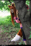 Spice and Wolf - Horo 15