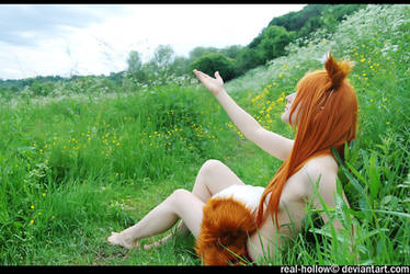 Spice and Wolf - Horo 36 by namstar91