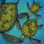 Turtle Islands Battle Map