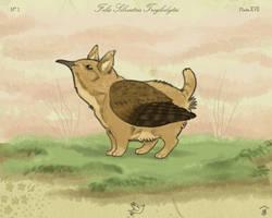 House Gryphon - Wren by Bailiwick