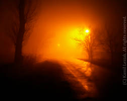 Misty winter with black ice by vertiser