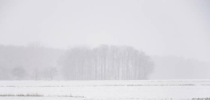 Winter groove