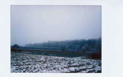 Winter Tree by vertiser