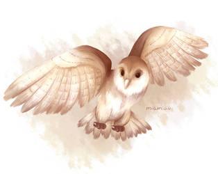 Owl by Amichiinyan