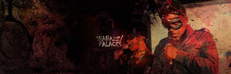 Shabazz Palaces. by Nozirrah