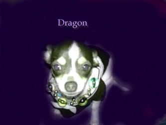 Dragon GIMP by Iceytown