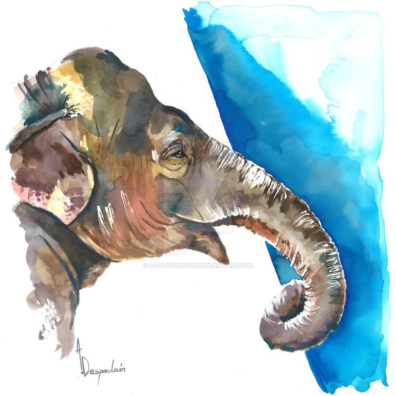 Elephant by AlittleDryade