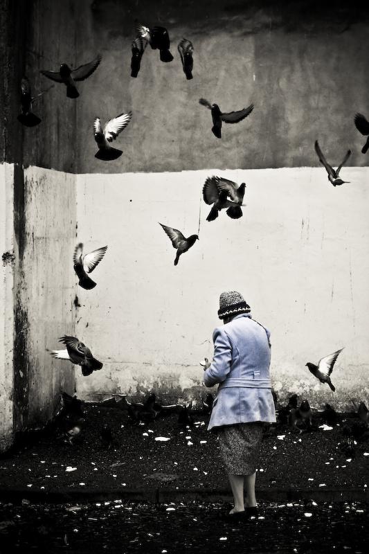 a woman feeding the birds by Dagne-s