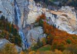 Autumn Spiessbach