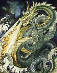 Chinese Sea Dragon