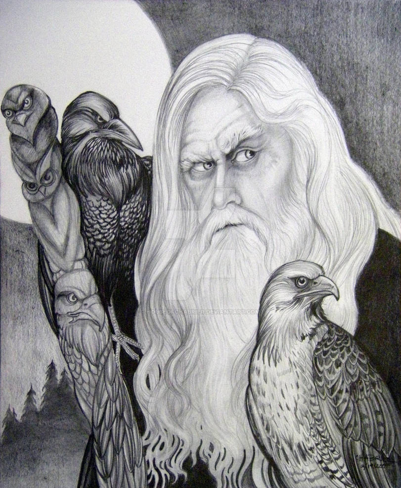 Wizard and Hawk Totem