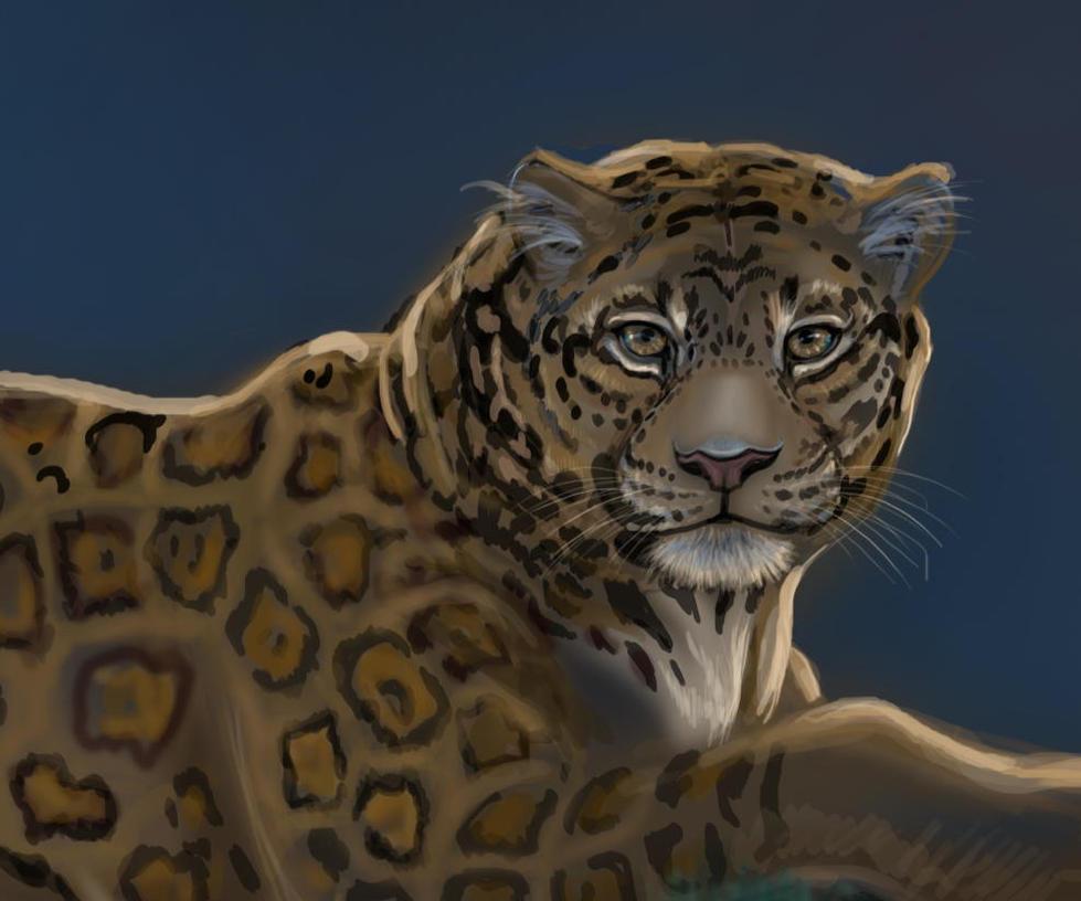 Jaguar Head: Jaguar Head Detail2 By HouseofChabrier On DeviantART