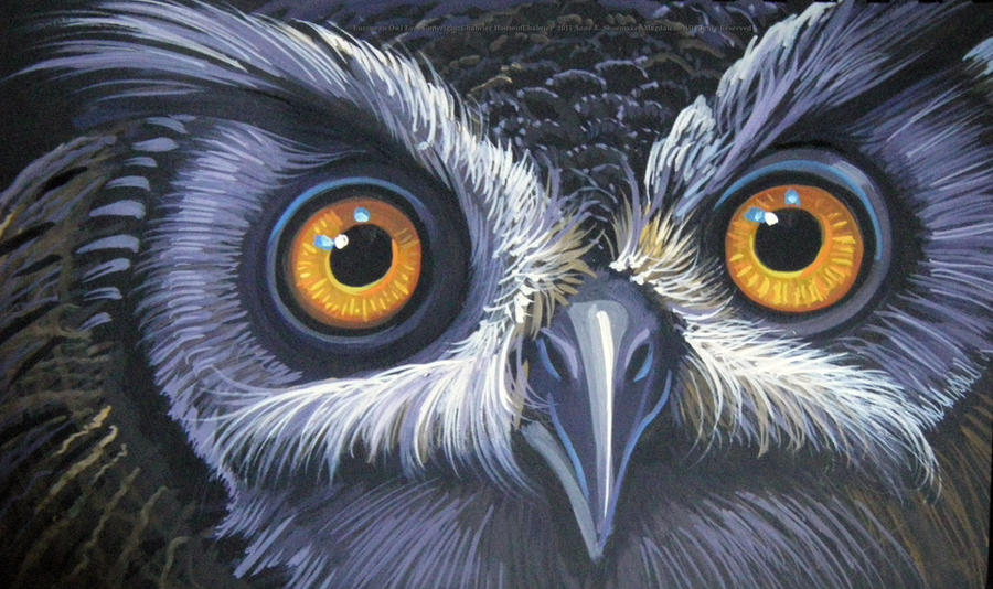European Owl Eyes by HouseofChabrierOwl Eyes Paintings