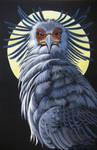 Secretary Bird by Moonlight