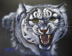 Dsoden's Snow Leopard