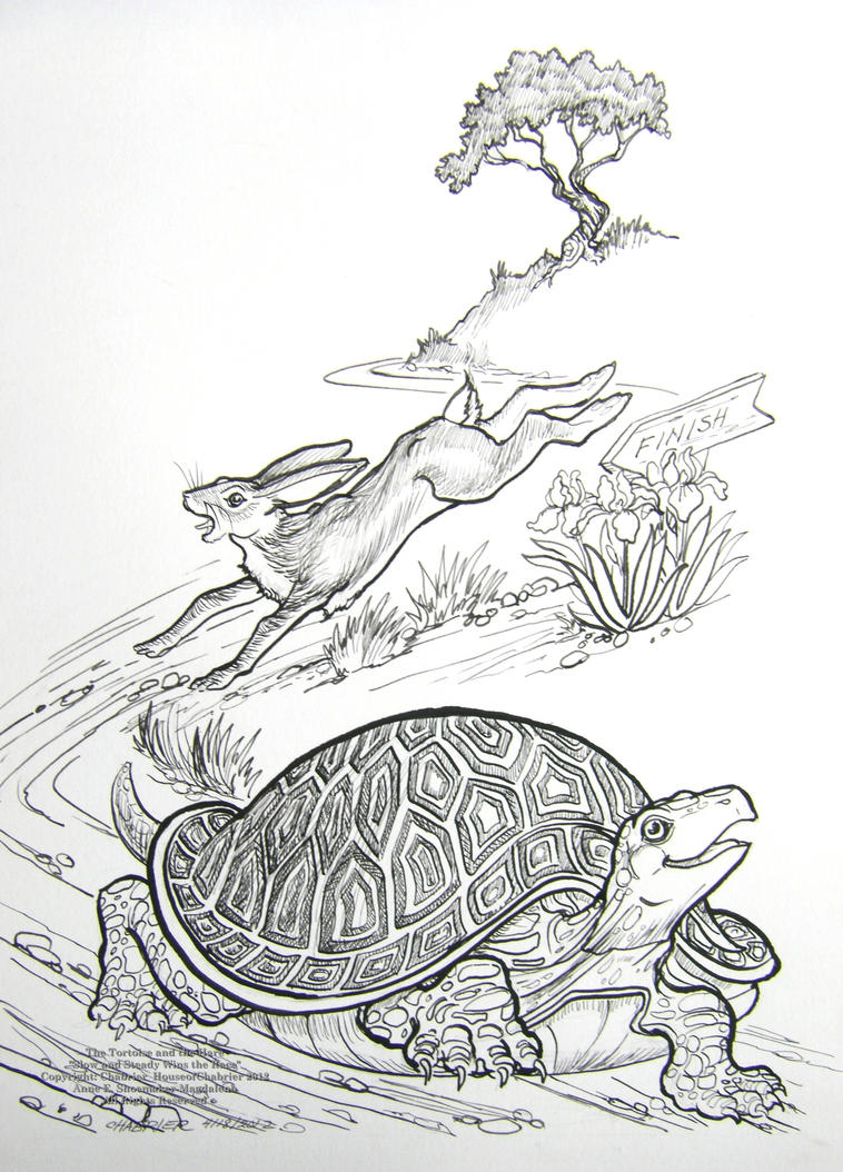 The Tortoise and the Hare Race by HouseofChabrier on ...