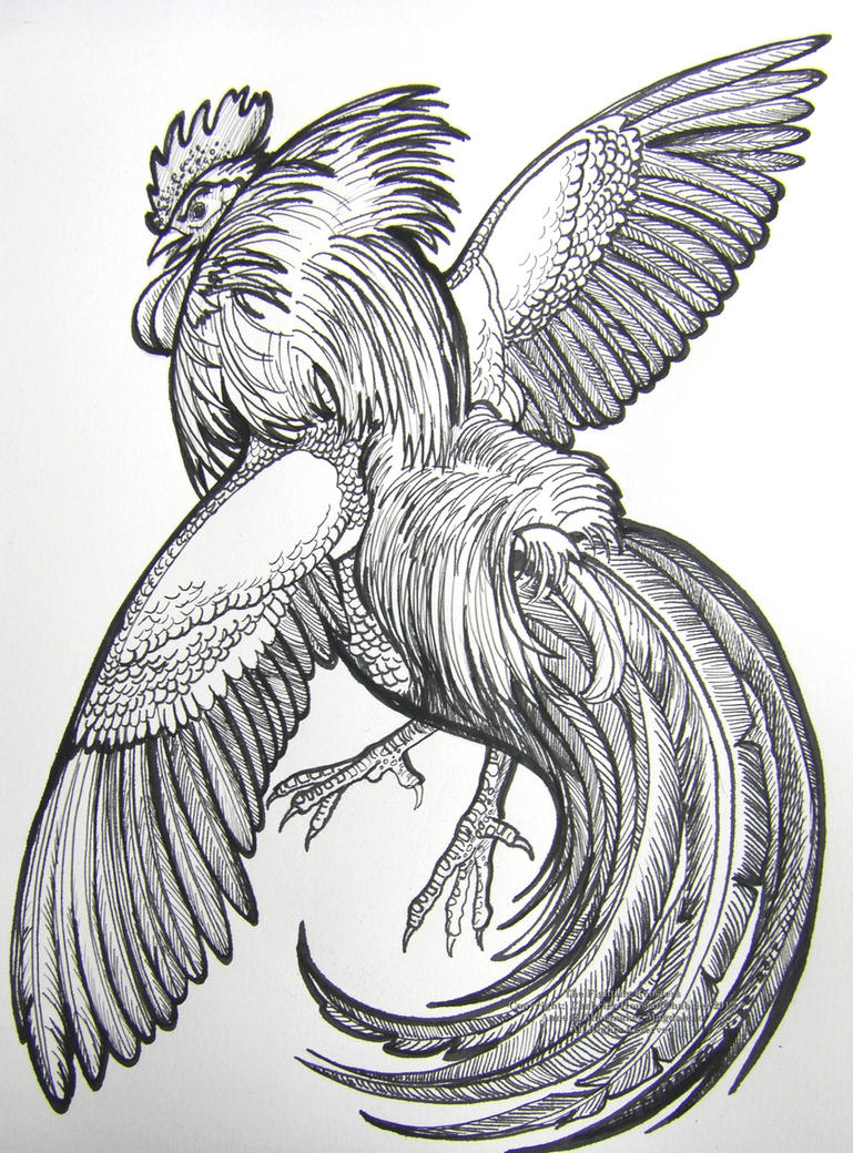 The Fighting Rooster by HouseofChabrier on DeviantArt