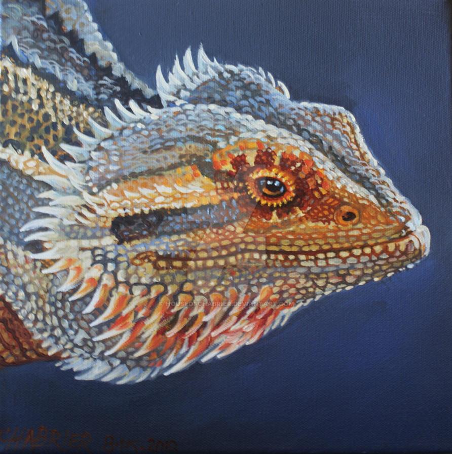Arizona  Lizard 1 by HouseofChabrier