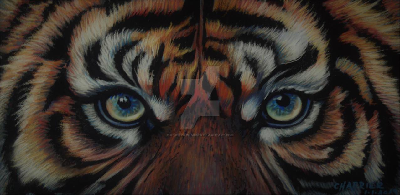 Tiger Tiger Burning Bright  by HouseofChabrier