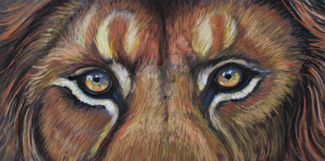 Lion Eyes  by HouseofChabrier