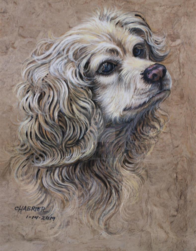 Honey's Portrait  by HouseofChabrier