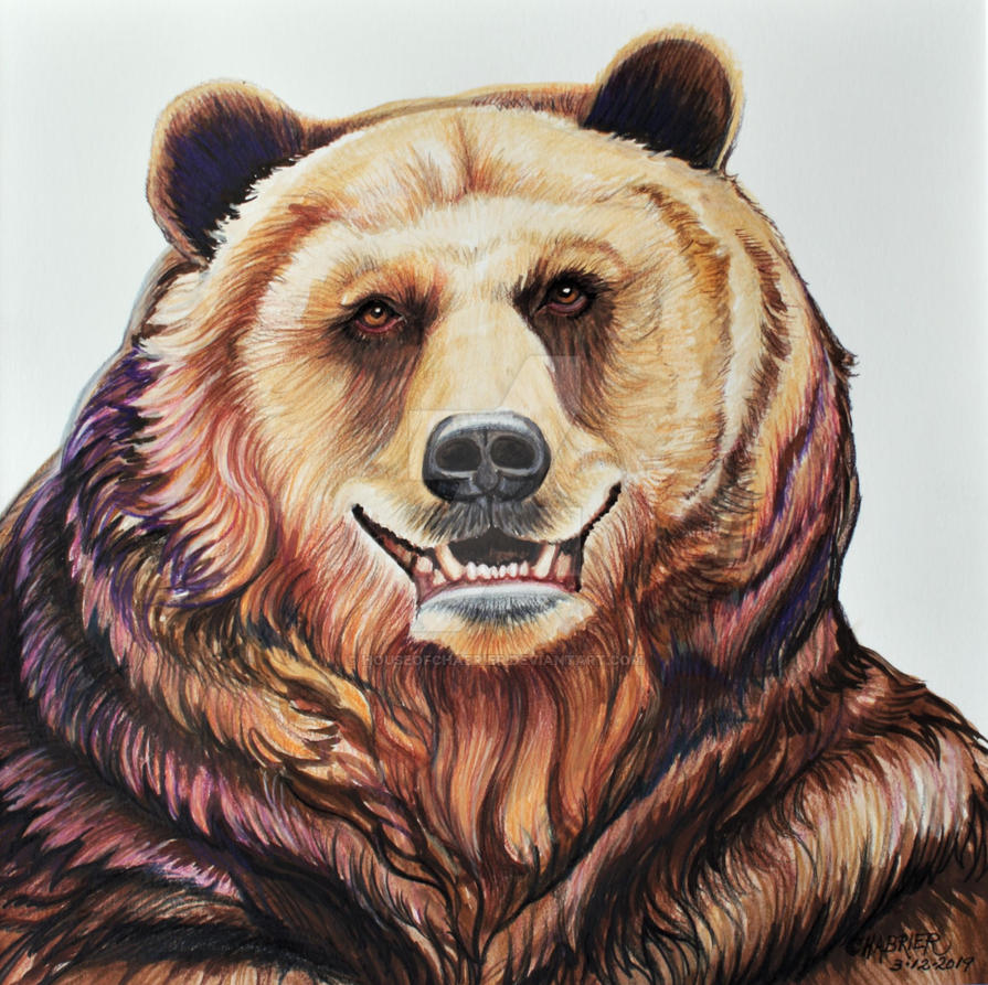 Huggy the Happy Bear  by HouseofChabrier