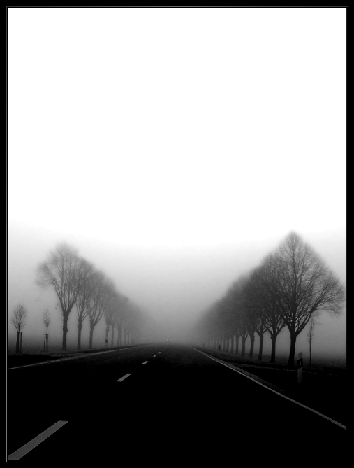 road to nowhere by Wundenkuessen