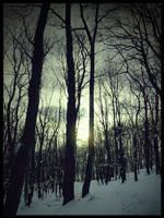 winter memories by Wundenkuessen