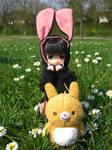 Bunny or Puppy?
