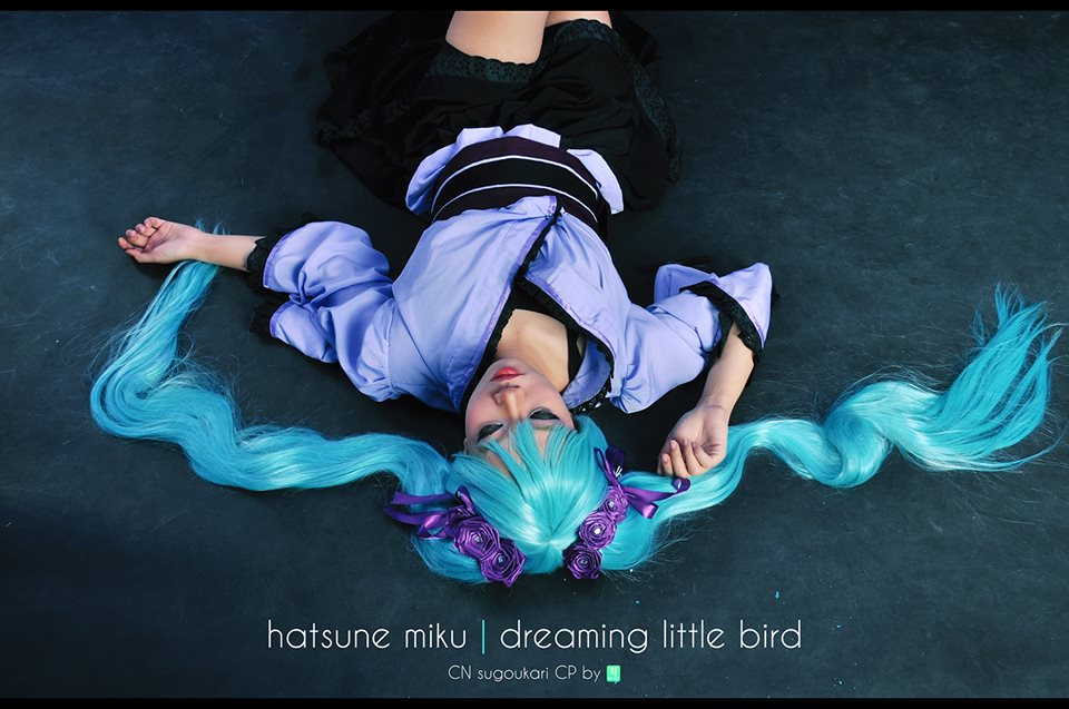 Hatsune Miku - Dreaming Little Bird by Isami-Magda-chan