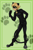 Cat Noir by Reinart1416
