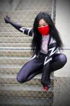Silk Cosplay II