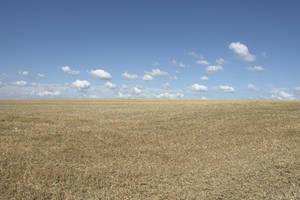 landscape1 by gd08