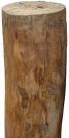 log wood png