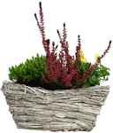 flowers basket png
