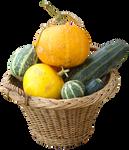 pumpkin basket png