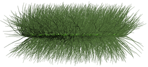 grass_01 png by gd08