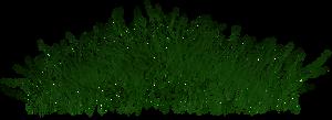 grass_02 png