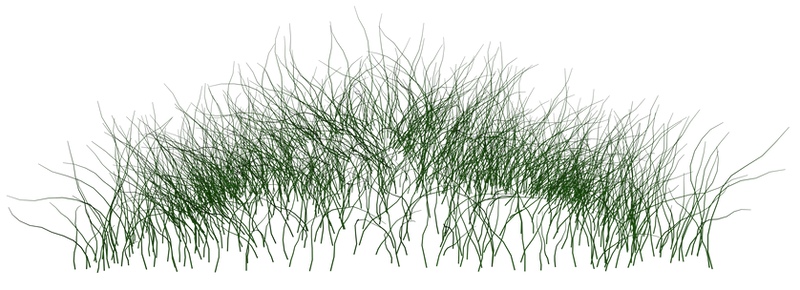 grass_02 png by gd08