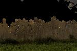 Grass 01 png