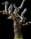 Dead tree 02 png