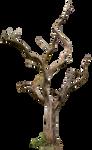 Dead tree 03 HQ