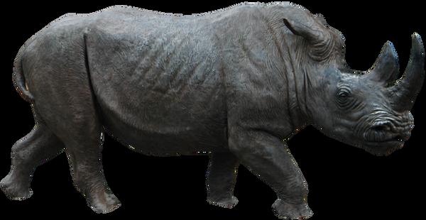 Rhino 02 By Gd08 by gd08